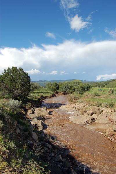 Cameron Creek