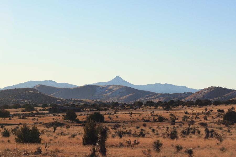 Cookes Peak