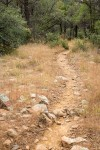 Little Walnut Trail