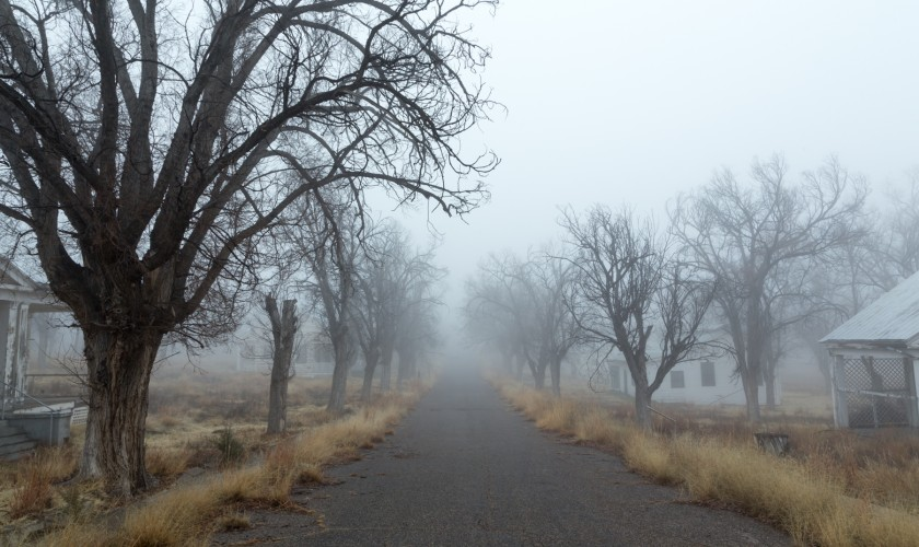 Foggy Day in Grant County-10
